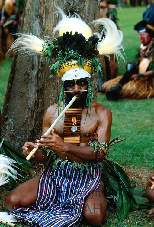 Bearded tribesman wearing feathered headdress and playing a pipe during  a gathering of tribes at Mount Hagen in Papua New Guinea