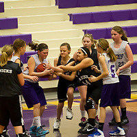 01-18-14 Berryville Youth Basketball vs Pea Ridge  5th game