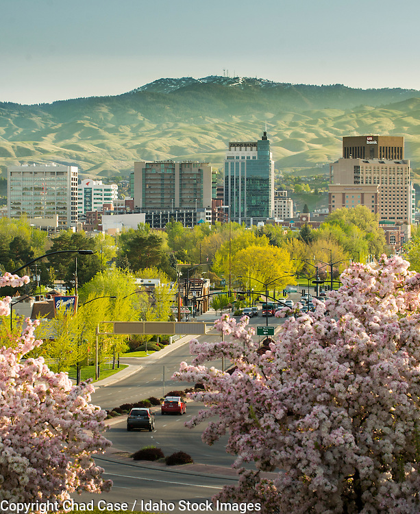 The Boise skyline in the spring.