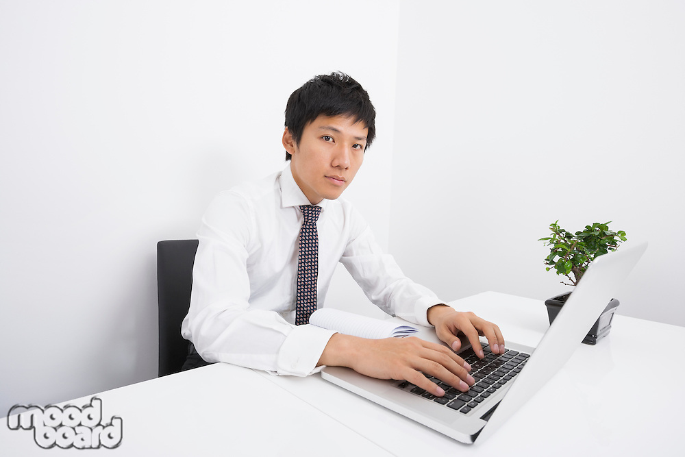 Portrait of mid adult businessman using laptop at office desk