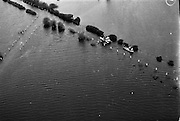 Aerial Views of Shannon Floods.30/12/1959