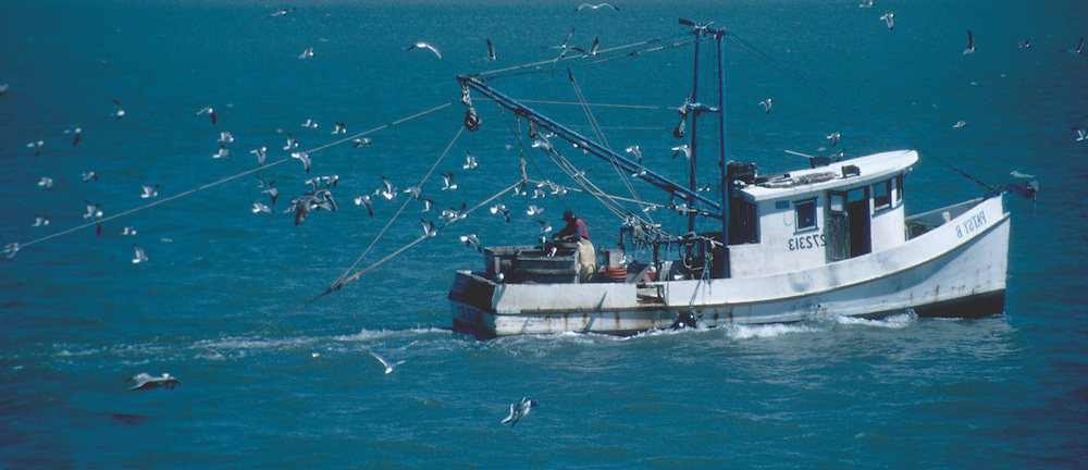 Working fishing boats for catching Gulf Coast shrimp, red snapper,flounder,oysters and crabs. Colorful picturesque seascape scenes on the water and in the harbor. Working fishing boats for catching Gulf Coast shrimp, red snapper,flounder,oysters and crabs. Colorful picturesque seascape scenes on the water and in the harbor.