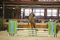 67 - Excellent van de Zuuthoeve<br /> BWP Hengstenkeuring 2014<br /> Zilveren Spoor Moorsele 2014<br /> © Dirk Caremans