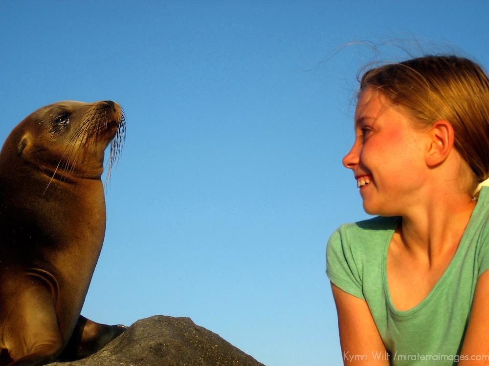 South America, Ecuador, Galapagos Islands. Young girl encounters Galapagos Sea Lion pup.