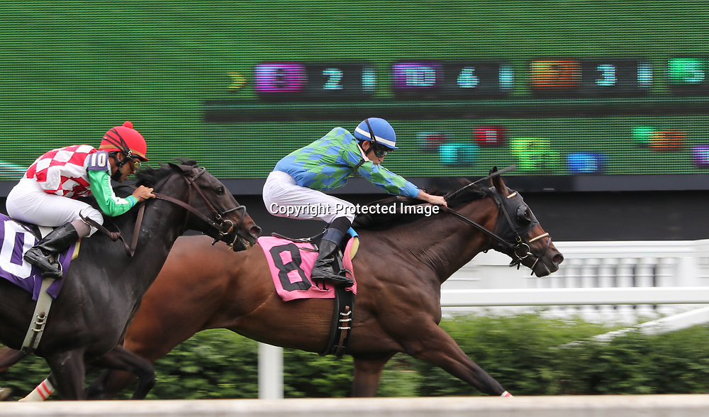 Two horses duel for the win at Churchill Downs, Louisville, Kentucky