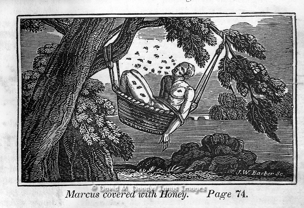 """marcus is covered with honey"" Protestant vs Catholic violence. Vintage Woodcut Illustration from: ""Book of Martyrs"" Tortures carried out in the name of religion."