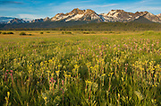 The Sawtooth Mountain Range in central Idaho.