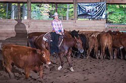 September 24, 2017 - Minshall Farm Cutting 6, held at Minshall Farms, Hillsburgh Ontario. The event was put on by the Ontario Cutting Horse Association. Riding in the $2,000 Limited Rider Class is Katie Leung on Missancattin owned by the rider.