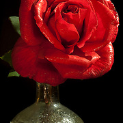 Red rose on bottle.