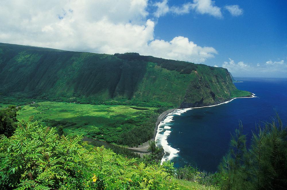 Waipio Valley from lookout; Hamakua Coast, Hawaii.