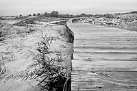 Plum Island, Newburyport, MA after the storm.  ©2017 Karen Bobotas Photographer
