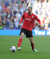 Cardiff City's Matthew Connolly  - Photo mandatory by-line: Alex James/JMP - Tel: Mobile: 07966 386802 31/08/2013 - SPORT - FOOTBALL - Cardiff City Stadium - Cardiff - Cardiff City V Everton - Barclays Premier League