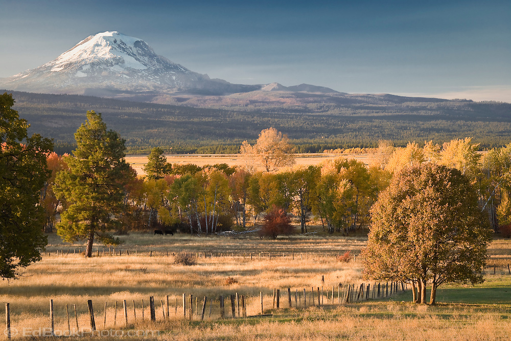 Looking at Mt, Adams across the Gifford Pinchot National Forest and ranches near Glenwood in the Cascade Mountain Range, WA, USA. autumn