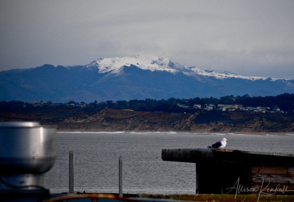 An unusual snowstorm leaves behind a dusting of snow on a mountain in the Monterey Bay region.<br />