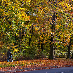 Parque de animais Lindenthaler (Colônia) fotografado em Colônia, na Alemanha. Registro feito em 2009.<br /> ⠀<br /> <br /> <br /> ENGLISH: Lindenthal Animal Park - Germany photographed Cologne, Germany. Picture made in 2009.