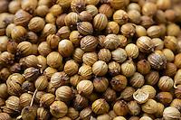 Close up or Coriander seeds.
