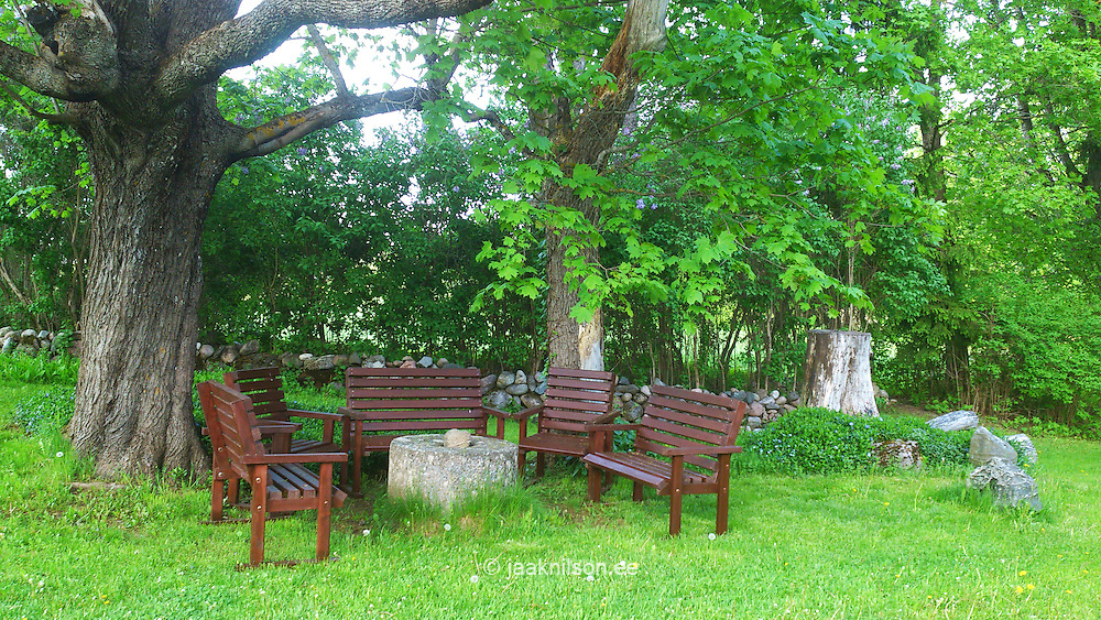 Rural garden with millstone and wooden benches in Estonia. Trees, tree-tunk. Home, backyard.
