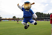 Haydon the Womble jumping in the air during the EFL Sky Bet League 1 match between AFC Wimbledon and Wycombe Wanderers at the Cherry Red Records Stadium, Kingston, England on 31 August 2019.