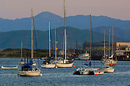 Boats at anchor in Morro Bay, California