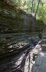 Watkins Glen State Park NY. Watkins Glen State Park is located outside the village of Watkins Glen, south of Seneca Lake in Schuyler County in New York's Finger Lakes region.