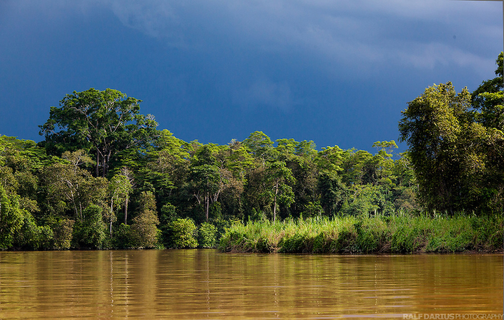 A thunderstorm is moving in at the lower Kinabatangan river