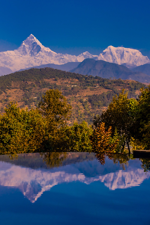 Machapuchare (Fishtail) and Annapurna I, peaks of the Annapurna Massif of the Himalayas reflected in the swimming pool at Tiger Mountain Pokhara Lodge, Lekhnath (near Pokhara), Nepal.