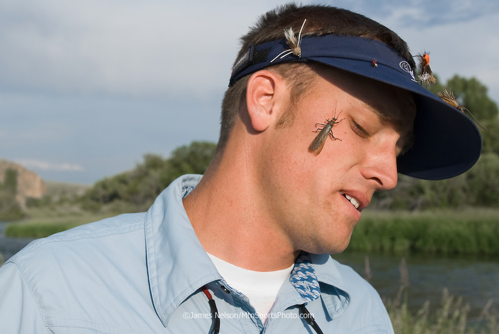 Giant stone flies (a.k.a., giant salmon flies) crawl on Earl Carlson's face during a trout fishing trip on the South Fork of the Snake River, Idaho.