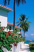 Beach condos, San Pedro, Ambergris Caye, Belize