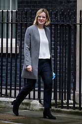 © Licensed to London News Pictures. 08/03/2017. London, UK. Home secretary AMBER RUDD arrives on Downing Street for a cabinet meeting before British chancellor Philip Hammond delivers his 2017 Budget to Parliament. Photo credit: Ben Cawthra/LNP