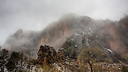 Cliff face enshrouded in thick cloud cover, Zion National Park