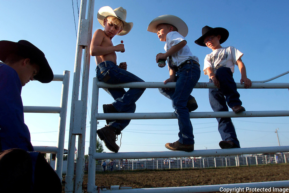 COWPOKES ON THE RAIL -- Casey Beals, left, Brady Weyers, center and Dalton Kingery watch from their perch on the arena gate as a bull rider arrives for the Millenium Bull Buck-Out 2002 at the Monroe County Fair in Iowa.