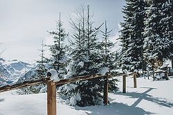 THEMENBILD - Zaun und Bäume in winterlicher Landschaft, aufgenommen am 27. Februar 2020 in Kaprun, Oesterreich // Fence and trees in winter landscape, in Kaprun, Austria on 2020/02/27. EXPA Pictures © 2020, PhotoCredit: EXPA/Stefanie Oberhauser