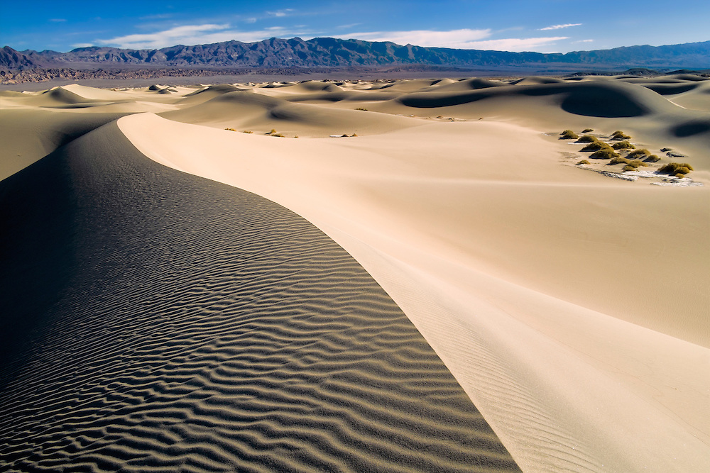 Dunescape - Mesquite Dunes - Death Valley, CA