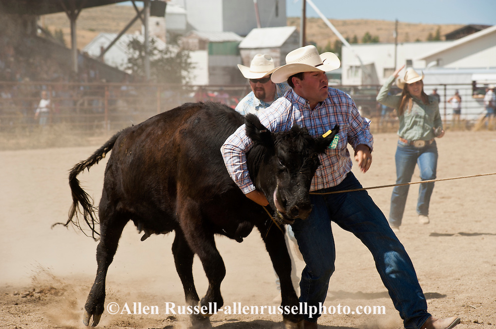Wilsall Ranch Rodeo, Montana, Wild Cow Milking, The Inlaws and Outlaws Team, Tyler and Garrett Hamm, Jessica Sarrazin