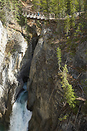 A bridge overlook allows tourists to view the deep canyon carved by Sunwapta River downstream of Sunwapta Falls in Jasper National Park, Alberta, Canada.