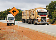 "While we stop our rental camper to view wild emus (sign), a ""road train"" (a tractor with double trailer, sometimes triple) roars by in Western Australia. Published 2010 in print and internet by Royal Automobile Club of Western Australia, Perth."