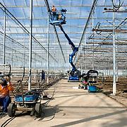 """Nederland Maasland 27 september 2007 .Aanleg nieuw type kas, extra hoge nieuwbouwkas bij tuinbouwbedrijf Lans .meer info: http://documents.plant.wur.nl/wurglas/4-5-OG4-07.pdf.Motieven voor verhoging.Hogere kassen zijn duurder. Er moeten.dus rationele factoren ten grondslag liggen.aan de trendmatige toename van de.kashoogte. """"Dat klopt"""", zegt projectleider.Jouke Campen. """"De belangrijkste motieven.om hoger te bouwen zijn het toenemende.gebruik van groeilicht, van horizontale.schermen en van een combinatie van beiden..Voor een goede spreiding en doordringing.van het licht moeten de lampen.minimaal 2 meter boven het gewas hangen..Ook bij schermen is een ruime.afstand tot het gewas wenselijk, omdat.dit resulteert in een grotere bufferruimte.en daarmee in een stabieler klimaat. De.combinatie groeilicht en schermen leidt.tot een verdere verhoging, omdat het.scherm vanuit het oogpunt van brandpreventie.ruim boven de groeilampen.moet liggen."""".Ook bij geconditioneerd telen is volgens.Campen een relatief grote klimaatbuffer.wenselijk, vooral wanneer er vernevelaars.boven het gewas hangen. De planten.mogen immers niet natslaan. In gangbare.kassen maakt verneveling in sommige.teelten eveneens opgang, onder andere.bij Phalaenopsis..Foto David Rozing/"""