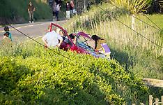 Tauranga-Serious injury after car v pole, Welcome Bay