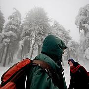 Europa, Deutschland, Sachsen-Anhalt, Harz, Brocken. Benno Schmidt alias Brocken-Benno hat bis zum Tag der Aufnahmen den Brocken 5.927 Mal bestiegen. Am 22.Mai 2010 ist sein 78. Geburtstag, dann will er sich zum 6.000 Mal einen Stempel beim Brockenwirt abholen.<br /> Europe, Germany, Saxony-Anhalt, Harz, Mountain Brocken. Benno Schmidt alias Brocken-Benno climbs the Mountain Brocken 5,927 times. At the 22. May he wants to climb at 6,000 times the Mountain Brocken. 22.02.2010 &copy; Harald Krieg/ Agentur Focus