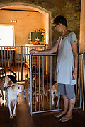 EVA RUPPEL opens a gate dividing her living/dining room from a hallway on her rural property near Kandy, Sri Lanka, on Wednesday, February 21, 2018. Ruppel does not cage the approximate 170 dogs she has rescued, allowing them freedom to interact in small packs in multiple pens throughout her property, as well as inside her home. Ruppel created Tikiri Trust, with the financial assistance of her father, to rescue and rehome Sri Lanka's street dogs.<br /> <br /> <br /> <br /> It is impossible to visit Sri Lanka without seeing street dogs in nearly every public space, near hotels, guest houses and restaurants, schools, offices, markets, hospitals, police stations, bus terminals, railway stations, temples, etc. These dogs do not have their own homes, but they are usually highly tolerated and are typically fed collectively by people in a particular area.<br /> <br /> According to the NGO, Kandy Association for Community Protection through Animal Welfare (KACPAW), 100 unsterilized dogs will give rise to 3,000 dogs in one year. The Sri Lankan government, as well as several NGOs, work to spay/neuter animals, but there is need to educate the public and maintain funds to stay on top of their efforts.<br /> <br /> Eva Ruppel left Germany for a three-month visit to Sri Lanka, which included time in a Buddhist meditation retreat, and she remains in this island nation 37 years later.<br /> <br /> While married, Ruppel&rsquo;s husband asked that the couple keep only three dogs in their home at any one time, and she respected his wishes. This 60-something year old lost her husband to a ruptured brain blood vessel in 1995 when he was 51 years old, after nine years of marriage. After his death, she began rescuing more and more animals and she now lives with 170 dogs, plus a dozen or so cats.<br /> <br /> With the support of her father, she started Tikiri Trust. Her father passed away in 2011, and he left her an inheritance, which she continues to use to support her cause. <br /> <br /> Ruppel, who is fluent in German, English and Sinhala, said that she has found homes fo