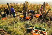 Hungary: the Tokaji Land - Hetszolo Winery