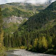 Heaven's Peak above Avalanche Brook, Glacier National Park, Montana, USA