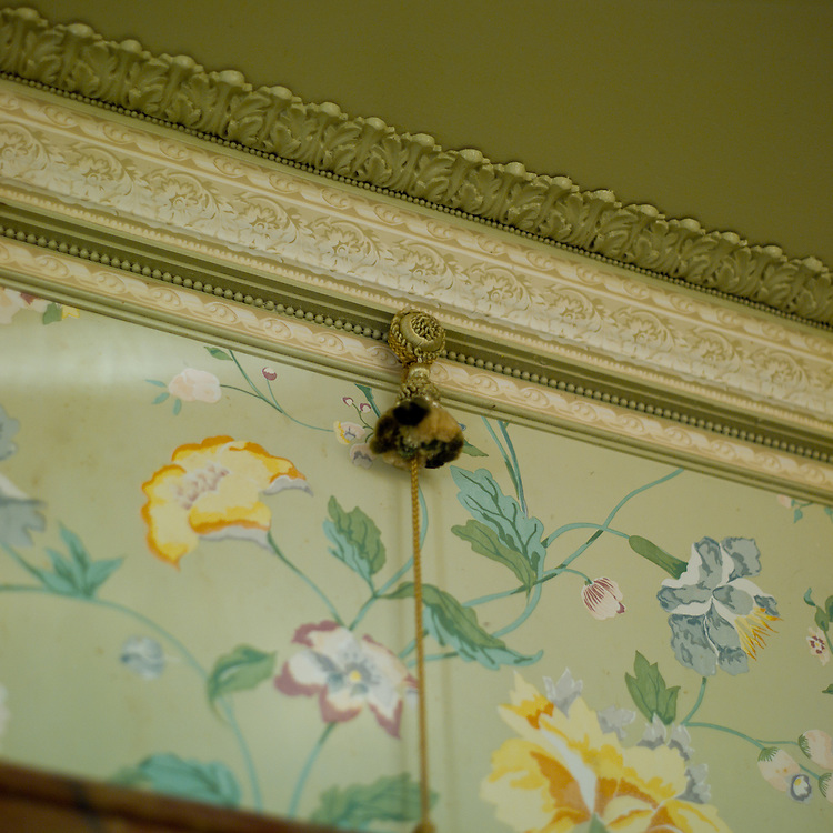 Detail of picture rail molding and artwork hanging system.