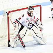 Clay Witt #31 of the Northeastern Huskies warms up prior to the game against the Minnesota Gophers at Matthews Arena on November 29, 2014 in Boston, Massachusetts. (Photo by Elan Kawesch)
