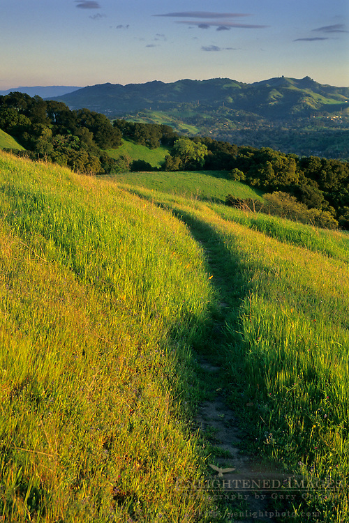 Sunset light on green hills and trail along Lafayette Ridge, Lafayette, CALIFORNIA