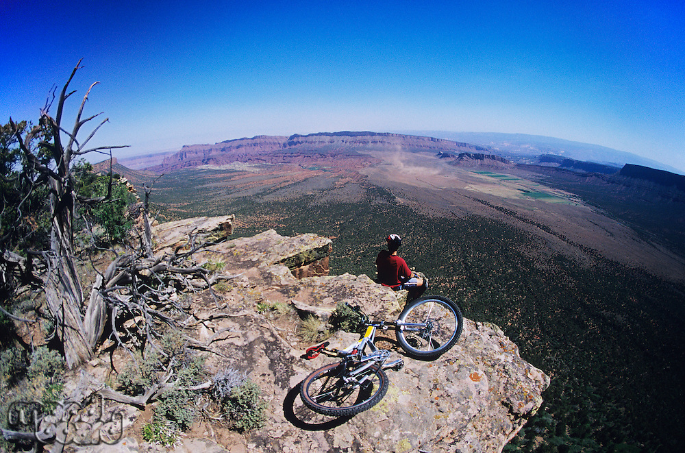 Mountain biker on rock looking at view