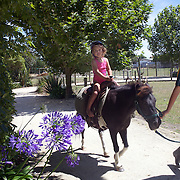 Pony rides at the The Hawke's Bay Farmyard Zoo. The zoo provides  educational opportunities with animal feeding for children and a safe, clean spacious environment with many different varieties of farmyard animals. Hawke's Bay Farmyard Zoo, East Road. Haumoana, Hastings. Hawkes Bay, New Zealand. 12th January 2011. Photo Tim Clayton..