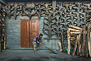 Konyak Naga house & buffalo skulls<br /> Konyak Naga headhunting Tribe<br /> Mon district<br /> Nagaland,  ne India