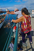 Crab catch, Bellingham Bay and Dock, WA