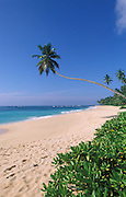 Sri Lanka. .Beautiful beach on the south coast of the country.